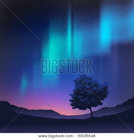 The northern lights with a tree in the foreground, vector illustration.