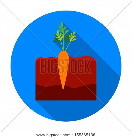 Carrot icon in flat style isolated on white background. Plant symbol vector illustration.