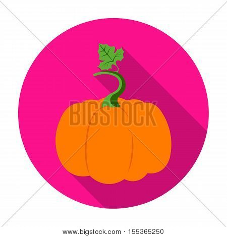 Pumpkin icon in flat style isolated on white background. Plant symbol vector illustration.
