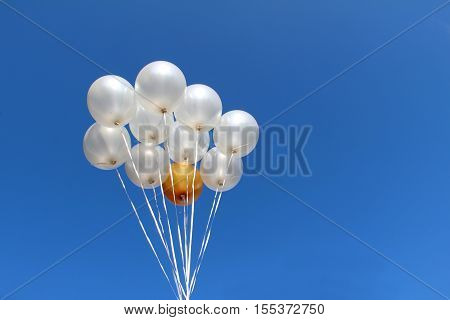 Helium Filled Party Balloons / Balloons ready to fly