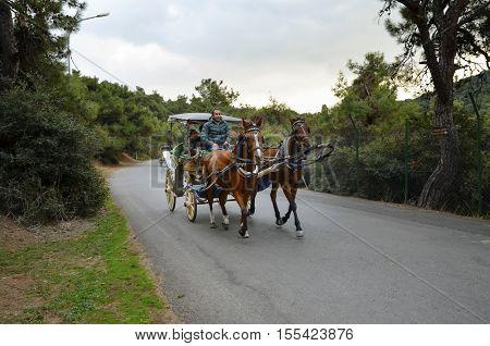Istanbul Turkey - October 30 2016: In the fall Buyukada Phaeton. Horse Carriage. The symbol of the Islands is the transportation vehicle phaetons. Adalar in Marmara Sea near Istanbul in Buyukada (meaning Big Island in Turkish). This is a neighborhood