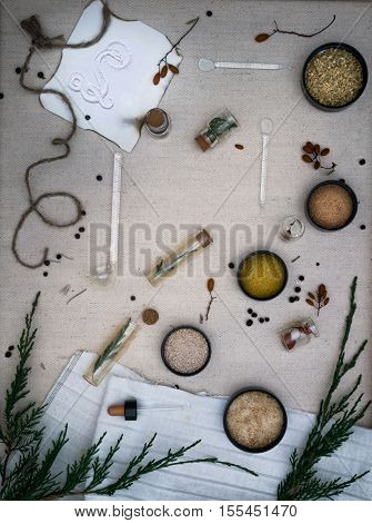 Alchemy Lab. dried herbs, salt, flasks, recipes on the old canvas