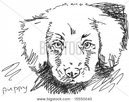 Hand drawn puppy dog. Visit my portfolio for big collection of doodles
