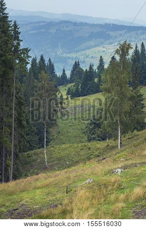 Mountains landscape from Bucovina Romania. Mountain landscape panorama. Carpathian mountains landscape. Summer landscape in the mountains.