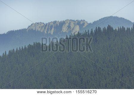 Mountains Landscape From Bucovina, Romania. Mountain Landscape P