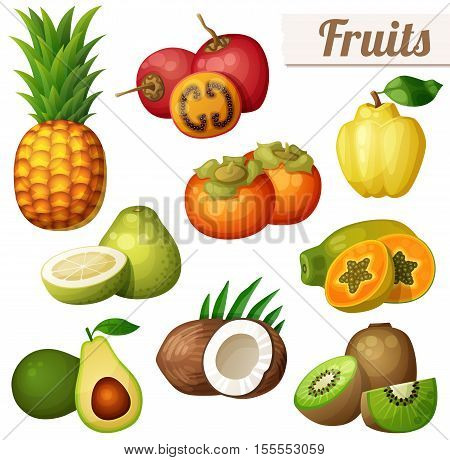 Set of cartoon food icons isolated on white background. Exotic fruits. Pineapple ananas , tamarillo, quince, persimmon, papaya pawpaw , pomelo, avocado, coconut, kiwi