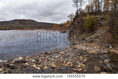 gloomy autumn landscape on the Chulman river in South Yakutia Russia