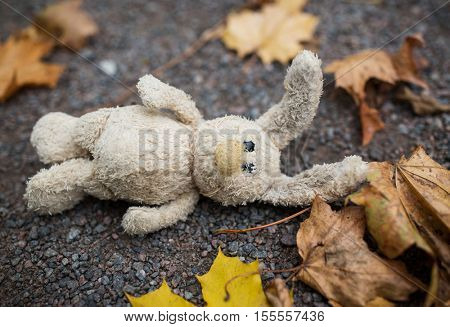 season, childhood and loneliness concept - lonely toy rabbit and autumn leaves on road or ground