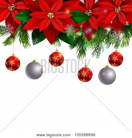 Christmas decoration with evergreen trees with poinsettia christmas balls isolated on white