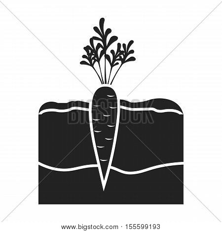 Carrot icon in black style isolated on white background. Plant symbol vector illustration.