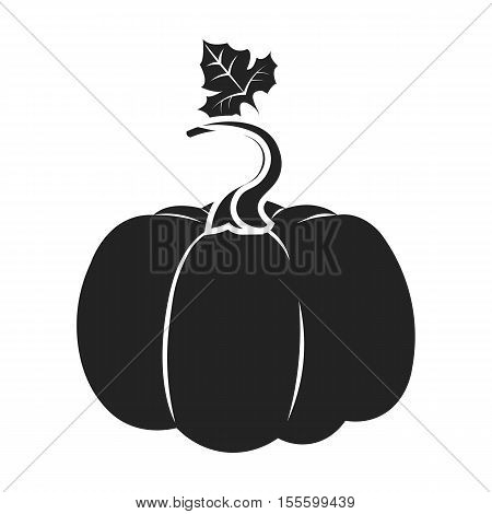 Pumpkin icon in black style isolated on white background. Plant symbol vector illustration.