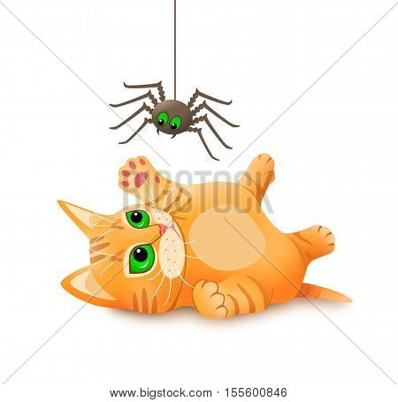 Kitten playing with spider. Isolated cute kitten scared by the spider illustration.