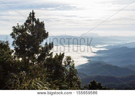 Sea Of Mist With Doi Luang Chiang Dao, View Form Doi Dam in Wianghaeng Chiangmai Thailand