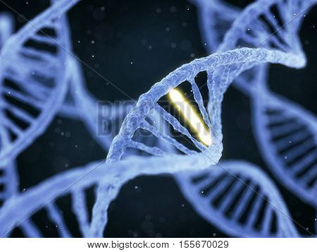 Dna With Unique Connection