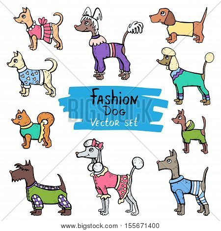 Vector set with hand drawn colored doodles of dogs. Flat illustrations on the theme of fashion clothes for dogs. Sketches for use in design, web site, packing, textile, fabric