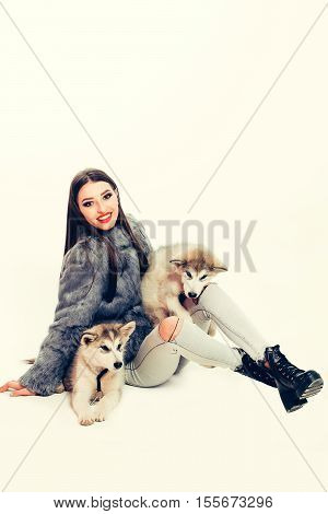 Pretty Sexy Girl With Husky Dog