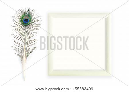 Peacock feathers and square frame on white background. Mock up for art works, wishes, greeting cards