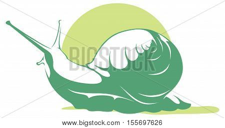 green monochromatic illustration of a snail. mollusk