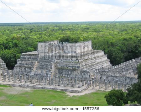 Pyramid Maya With The Jungle Behind, Chichen Itza, Mexico
