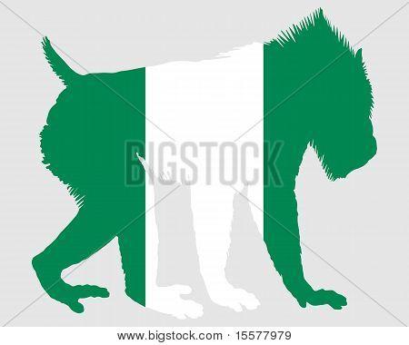Mandrill Nigeria