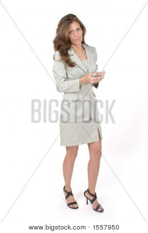 Business Woman Using Pda 6
