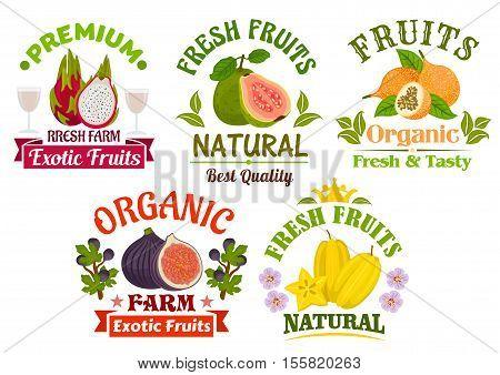 Fruits icons and signs set. Fresh juicy natural organic fruits guava, dragon fruit, lychee, figs, carambola