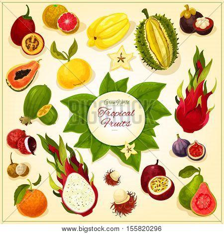 Fruits icons. Vector fruit emblem of isolated tropical and exotic juicy fresh durian, dragon fruit, guava, lychee, feijoa, passion fruit maracuya, figs and rambutan, mangosteen and orange, papaya