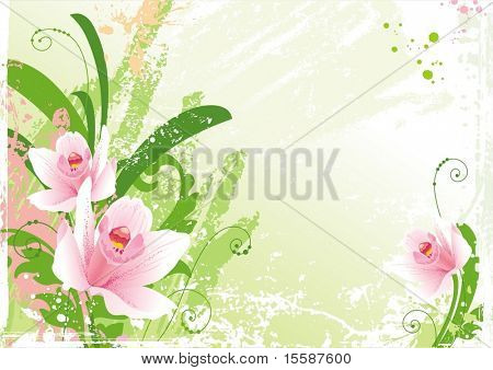 Grunge floral background with orchids