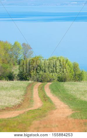 Road Country In Spring Day