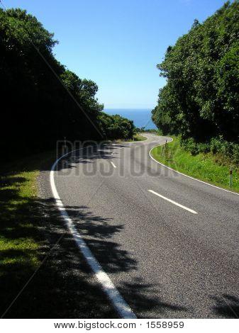 Road To The Coast, South Island, New Zealand