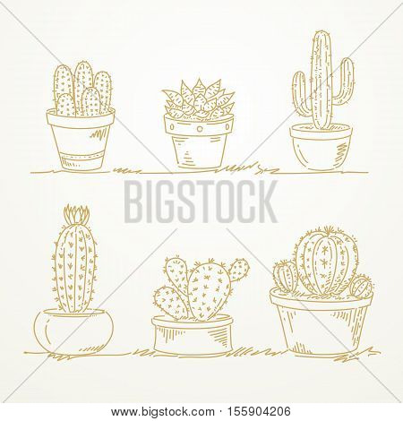 Cactus in pot Sketch hand drawn on paper