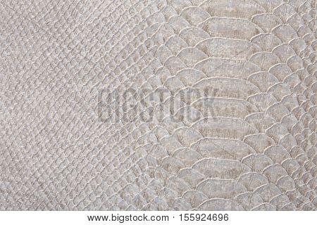 Gray Snakeskin