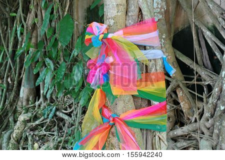 Seven Sacred Cloth Tied Around A Tree In The Temple.