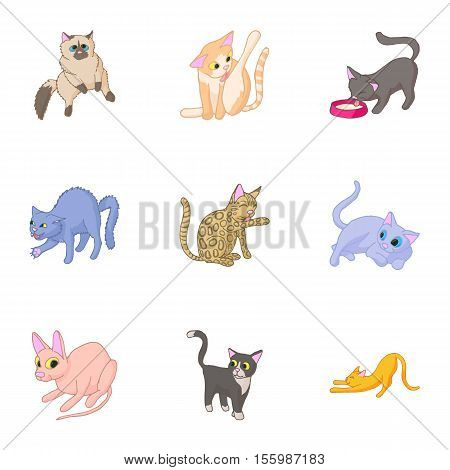 Furry friend icons set. Cartoon illustration of 9 furry friend vector icons for web