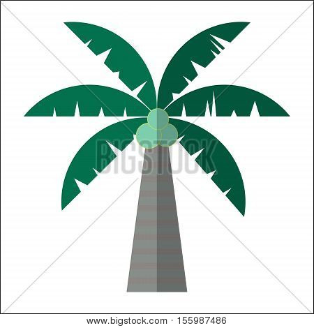 Palm Tree Icon Isolated Vector Illustration. Cartoon Symbol In Material Flat Style Design.