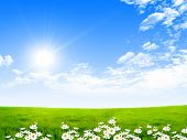 pic of sunshine  - Exquisite landscape with blue skies - JPG