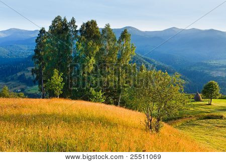 Evening Summer Mountain Landscape