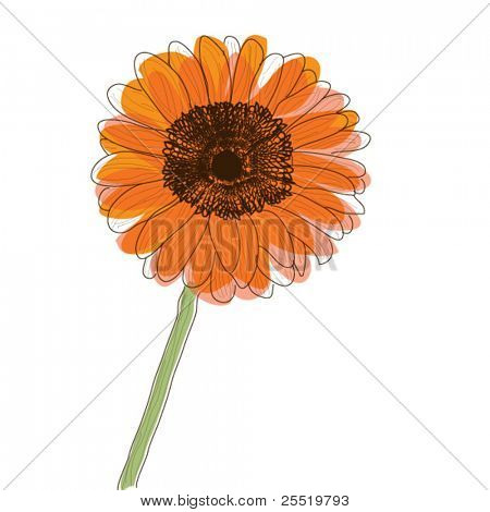 Orange Gerbera Daisy flower, retro style vector