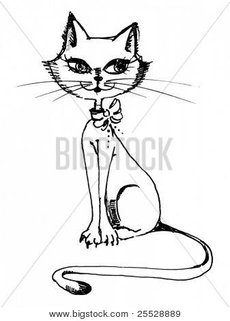 Sitting beautiful cat. Drawing made by hand