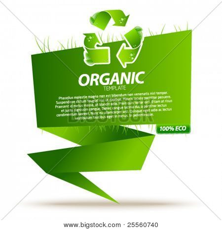 Green eco origami template with recycle sign 2