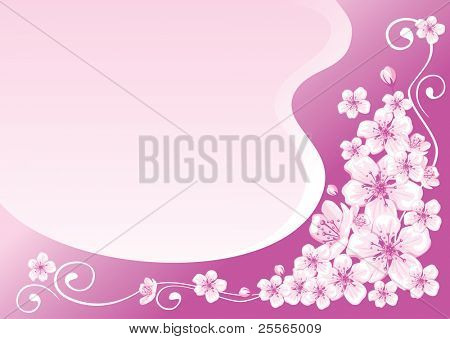 elegant spring frame decorated with cherry blossoms