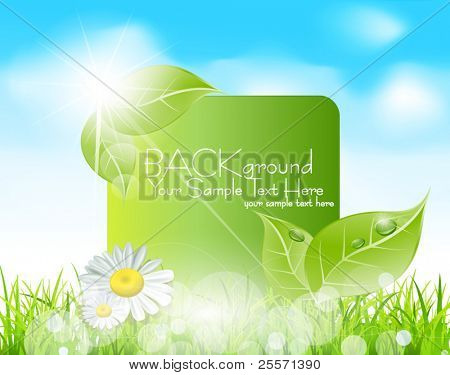 Vector spring banner with  leaves and grass against the blue sky