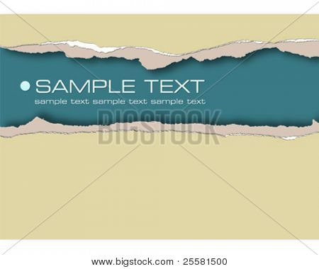 ripped paper , vector illustration