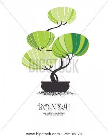vector stylized bonsai