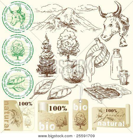 Bio, colección natural etiquetas originales dibujados a mano