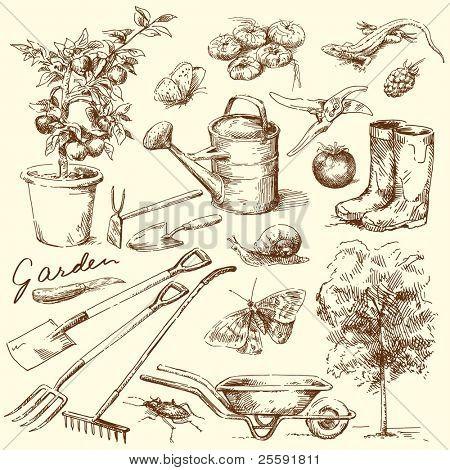 Постер, плакат: садовые инструменты, холст на подрамнике