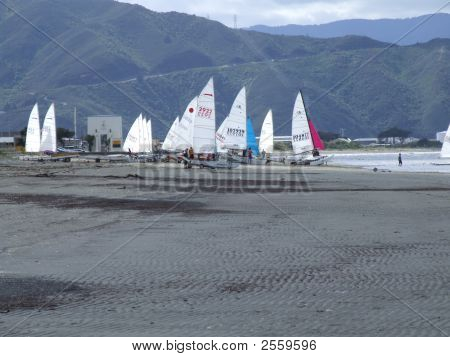 Seashore Sailboats