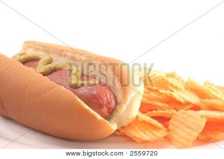 Hiot Dog