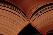image of smut  - Haf open book in middle close up - JPG