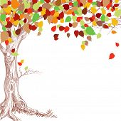 stock photo of orange-tree  - Autumn tree background - JPG